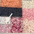 dragées (multi-couleurs)