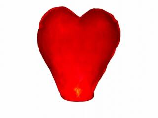 Lanterne voeux coeur 1